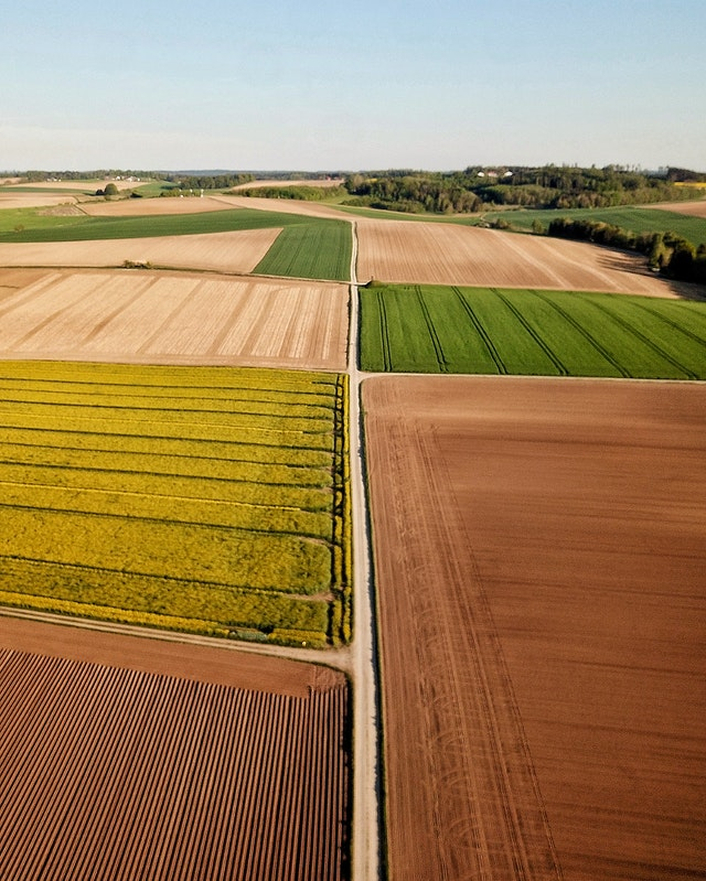 Agriculture and the Circular Economy